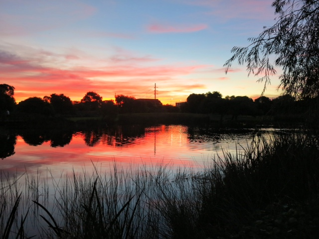 Sunset over boo park lake