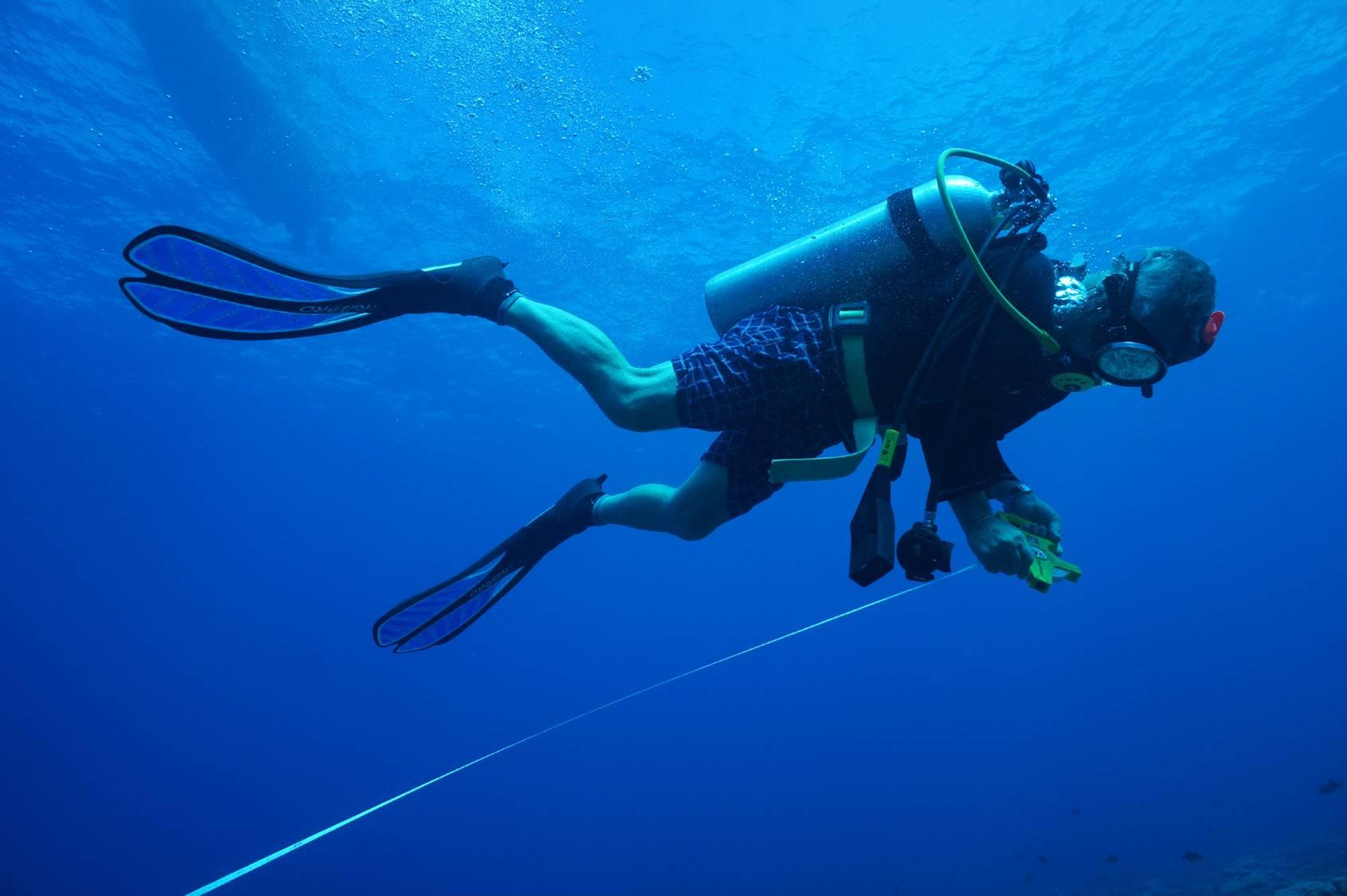 Surveying at Christmas Island