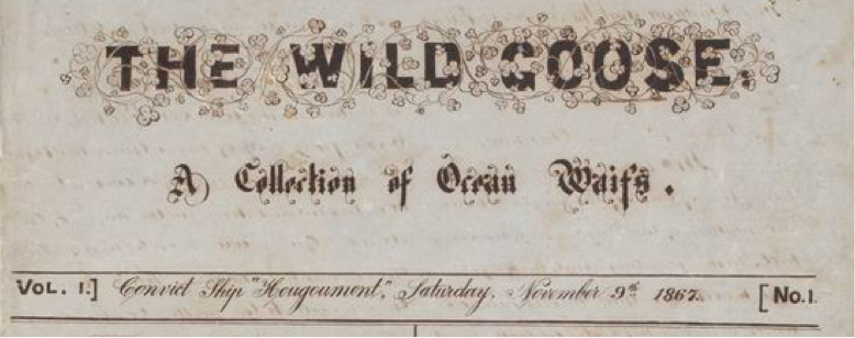 The Wild Goose - A Collection of Ocean Waifs