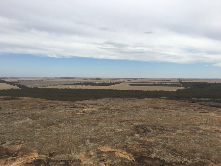 The view from Wave Rock over Western Australia's farm lands. Tony Hughes-D'Aeth
