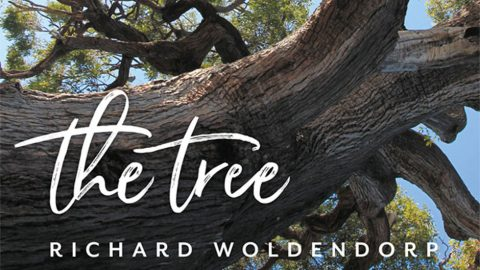 Book review – the tree