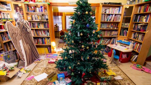 Now Christmas is done, what on earth should you do with the tree?