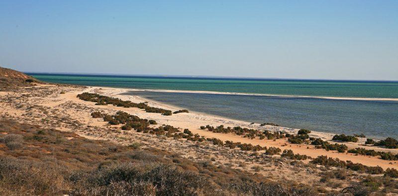 Coastline at Shark Bay
