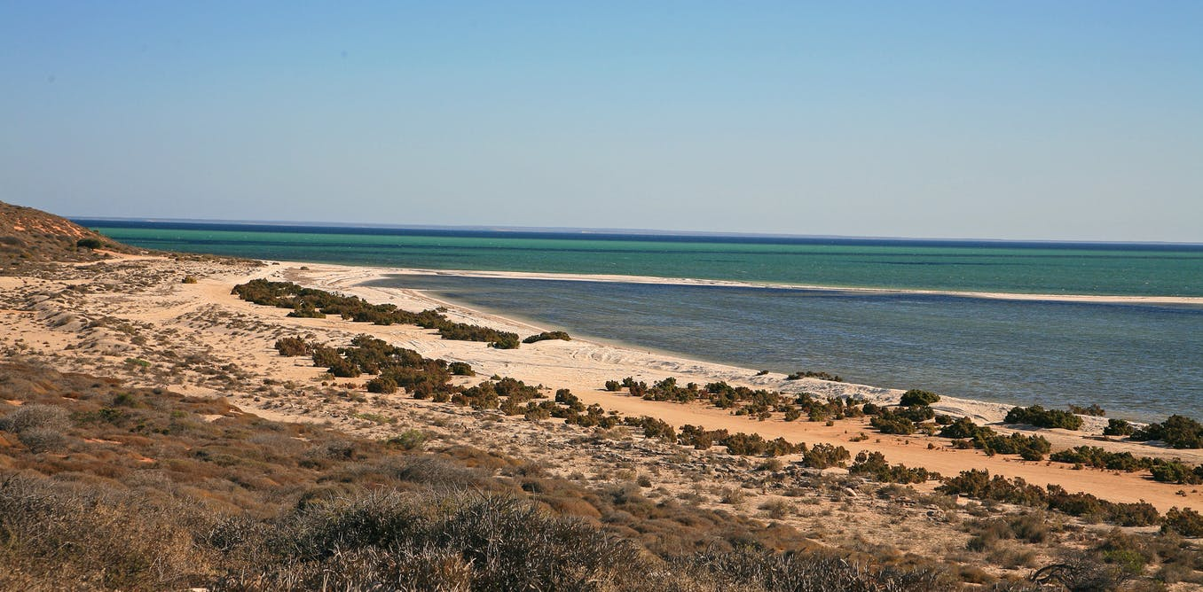 Coastline at Shark Bay