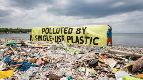 No Plastics A No Brainer – Plastic Free July Challenge
