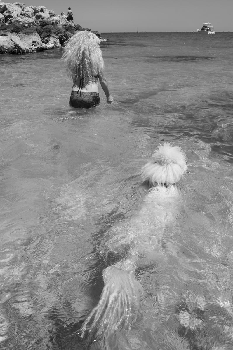 hairofdog