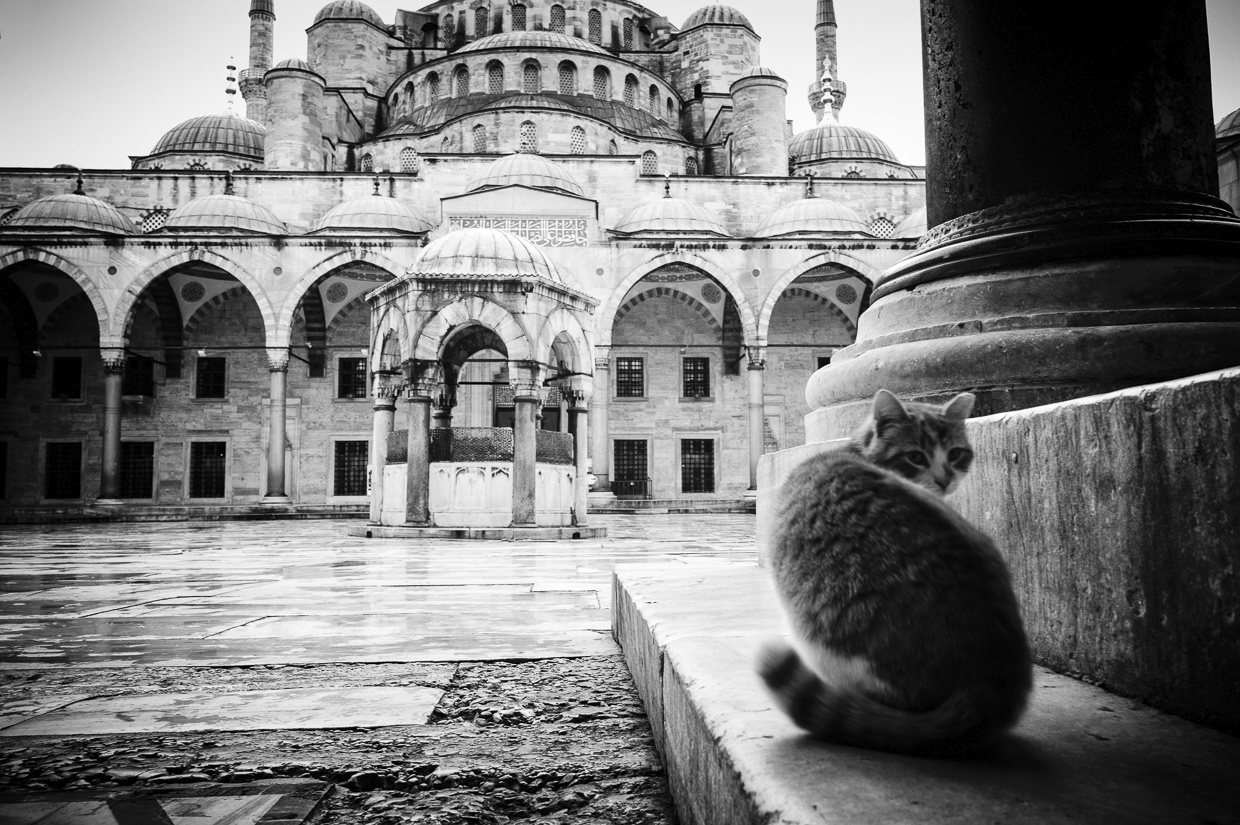 23 Istanbul-Blue Mosque