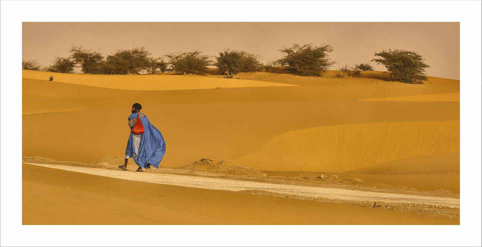 DESERT WANDERER MAURITANIA