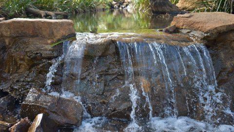 Places I Love – Lesmurdie Falls