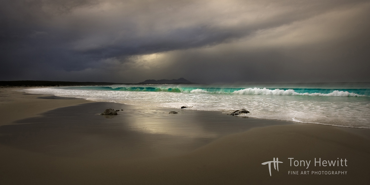 THEWITT©THE WAVE