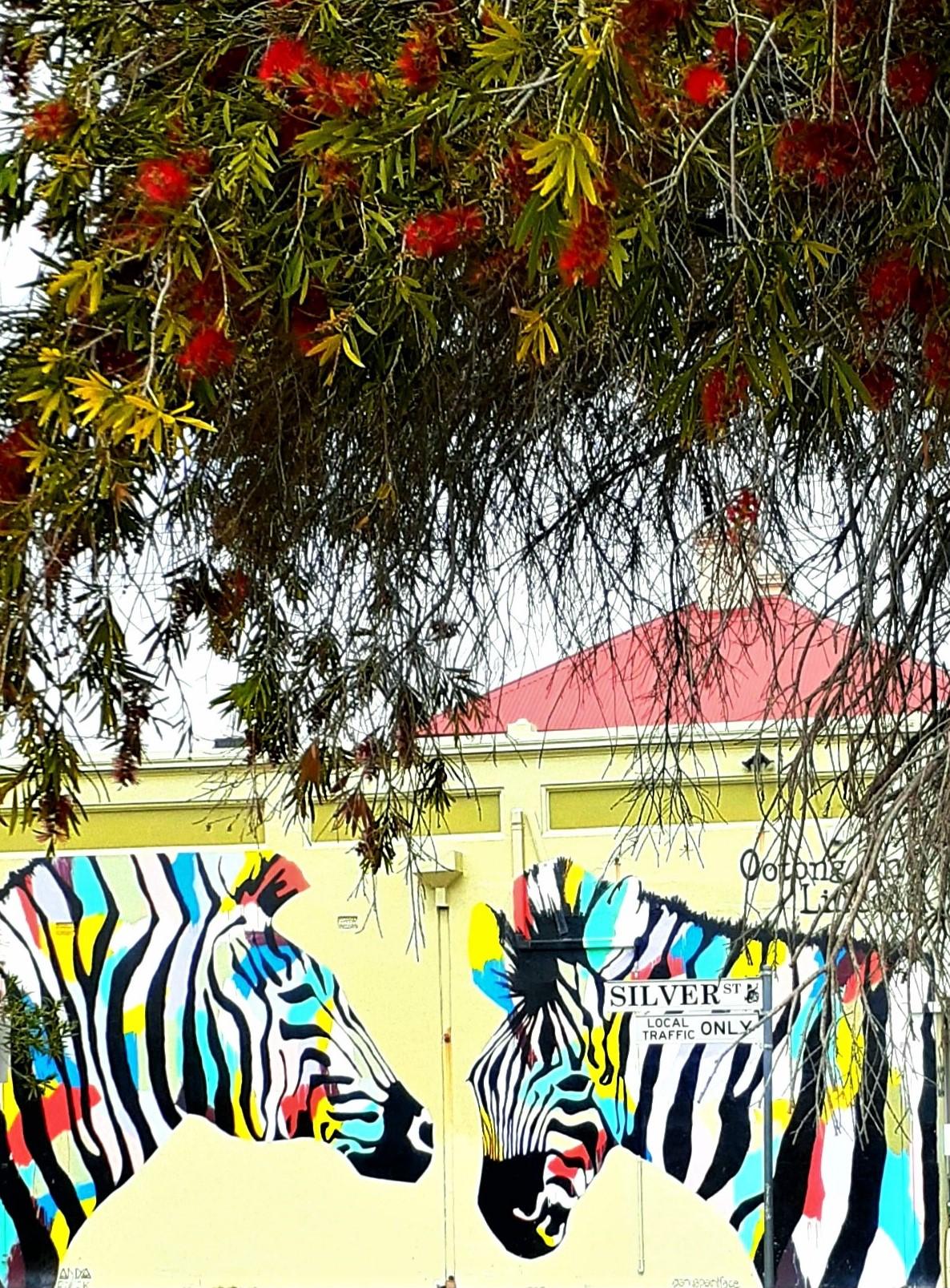 Zebras-B Brush